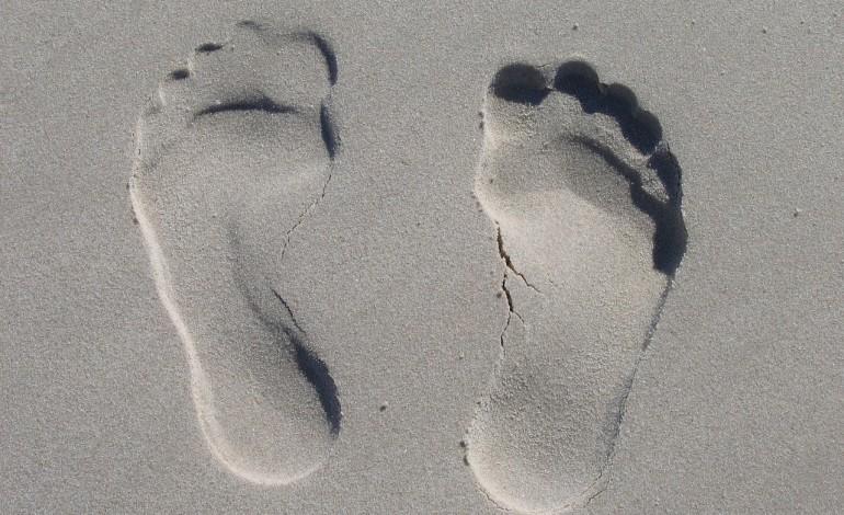 picioarelor