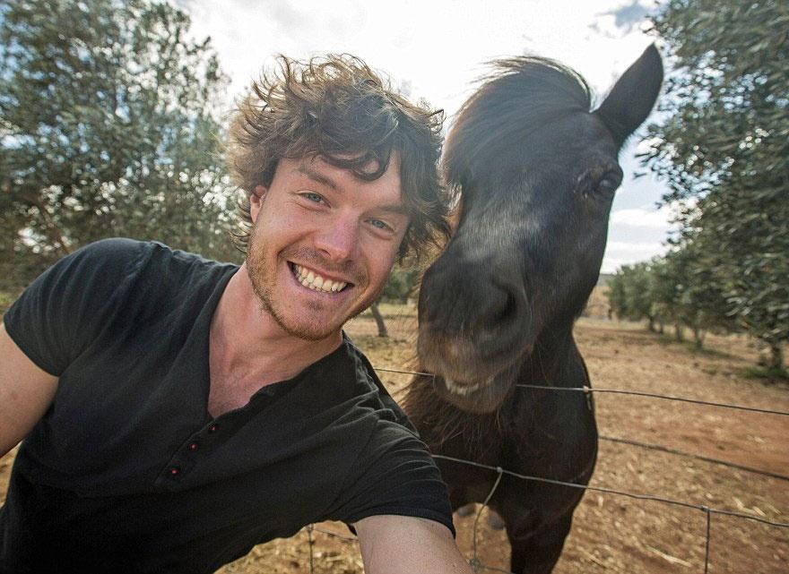 179205-880-1451151041-funny-animal-selfies-allan-dixon-19