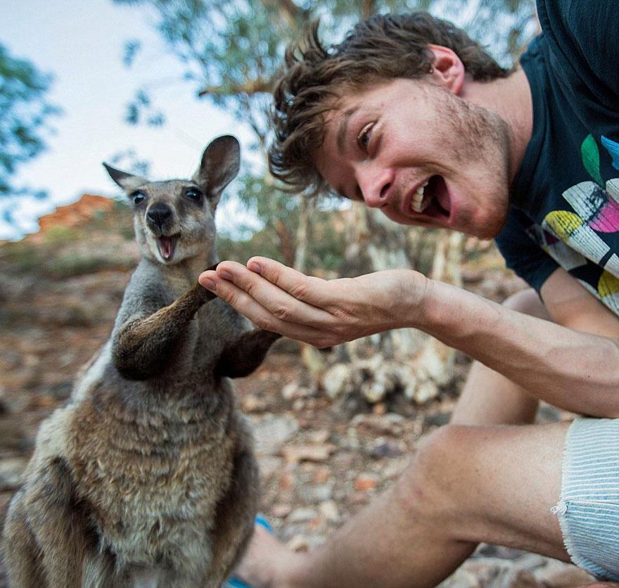 179255-880-1451151041-funny-animal-selfies-allan-dixon-21