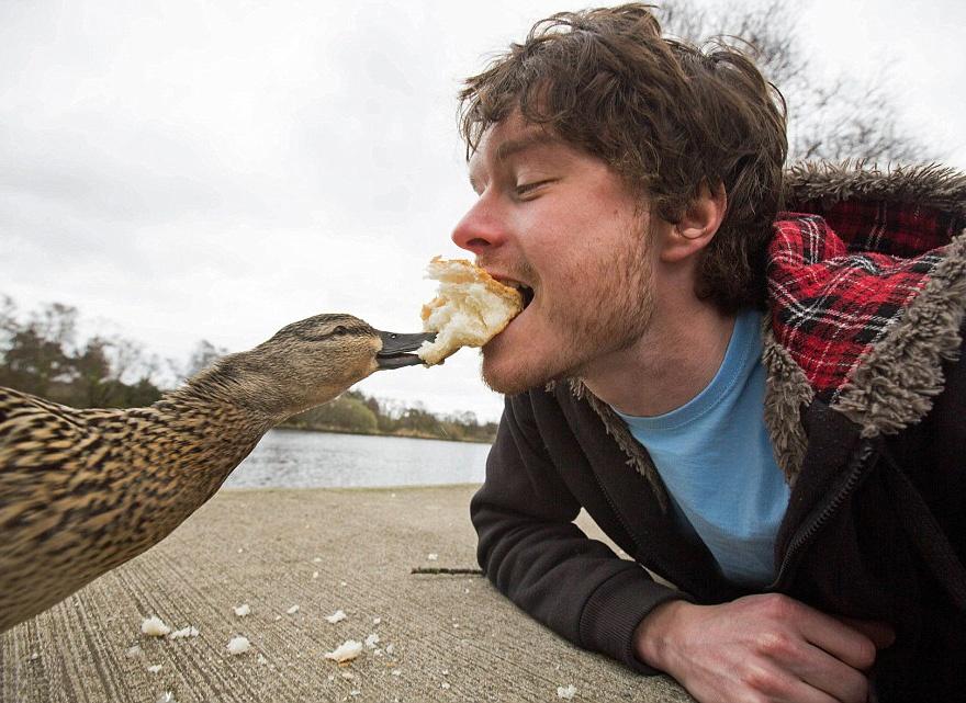 179405-880-1451151041-funny-animal-selfies-allan-dixon-3