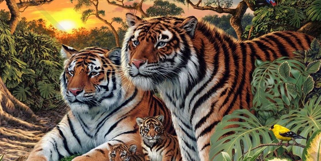 Aceasta imagine a devenit virala pe Internet! Tu cati tigri vezi in aceasta poza?