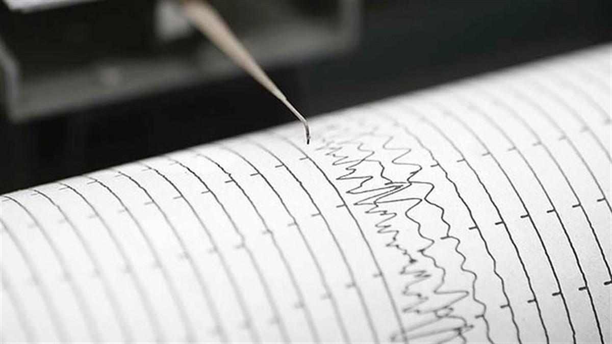 Un cutremur cu magnitudinea de 3.8 grade pe scara Richter s-a produs noaptea trecuta in zona Vrancea.