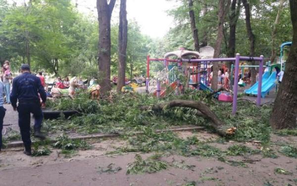 Incident in Cismigiu