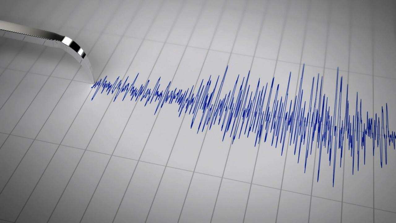 Un cutremur cu magnitudinea de 3.6 grade pe scara Richter s-a produs miercuri, 22 iunie 2016, in jurul orei 6.00 in zona Vrancea.