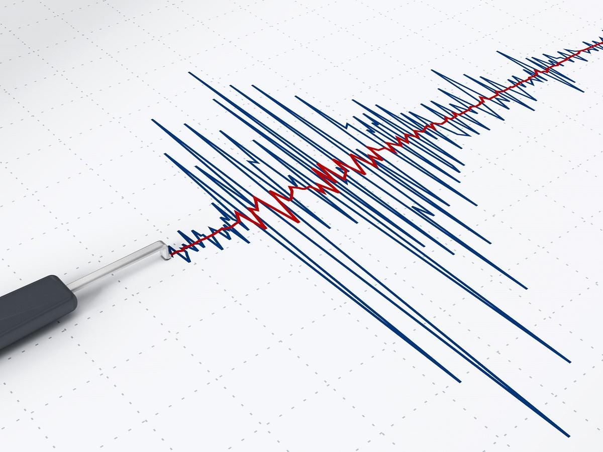 Cutremur cu magnitudinea de 3,7 pe scara Richter a avut loc in Vrancea