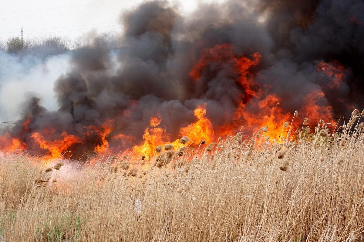 Un incendiu a izbucnit in Valcea, la o fabrica de cherestea. Focul se intinde pe o suprafta de aproximativ 1.800 de metri patrati.
