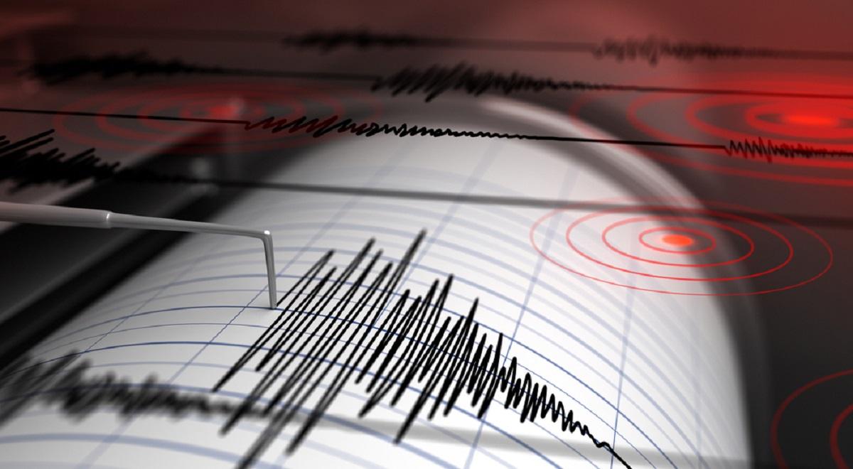 Cutremur, azi-noapte, în Buzău. Ce magnitudine a avut