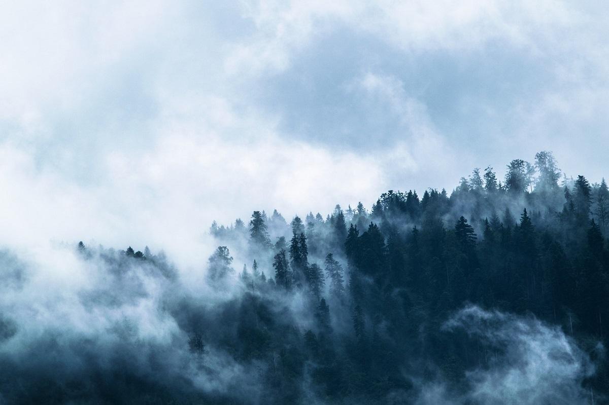 Avertizare meteo: Cod Galben de ceață și vânt, în Harghita și Sibiu