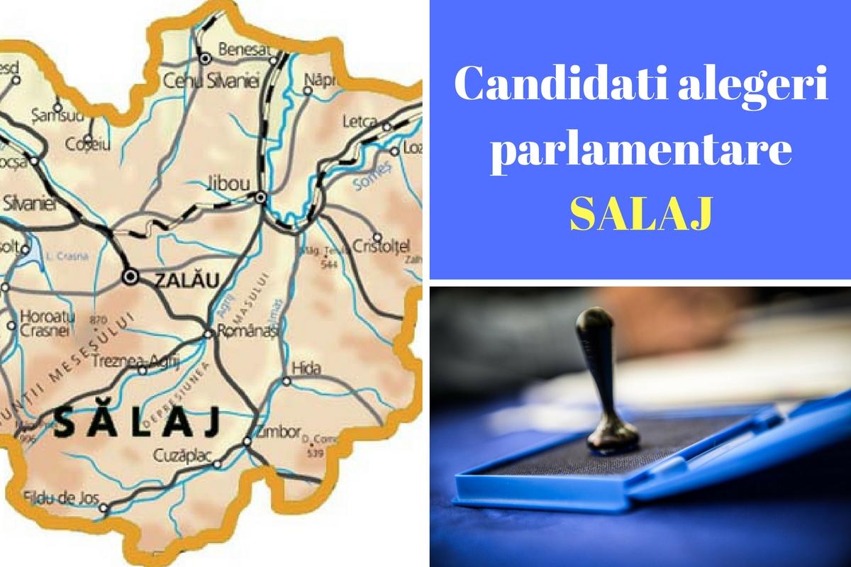 Candidați alegeri parlamentare 2016 Sălaj. Listele de candidați ale partidelor pentru Camera deputaților și Senat în județul Sălaj.