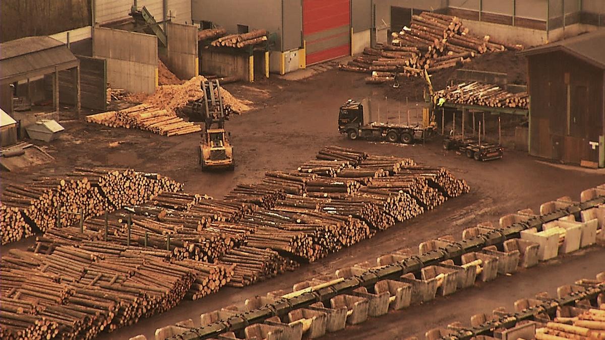 Control la trei firme de prelucrare a lemnului. Potrivit unui comunicat remis de Consiliul Concurenței există suspiciuni de...