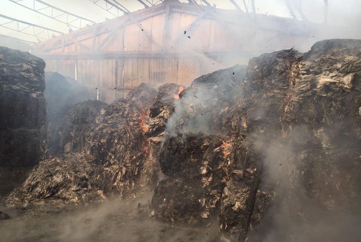 Incendiu de proporții în Codlea, în județul Brașov. Un cenntru de colectare de deșeuri a fost curpins de flăcări. Focul a fost observat de un paznic.