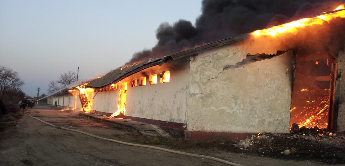 Incendiu în Ștefănești, județul Ilfov, miercuri dimineața. Flăcările au izbucnit la o hală unde se aflau mase plastice și material lemnos.