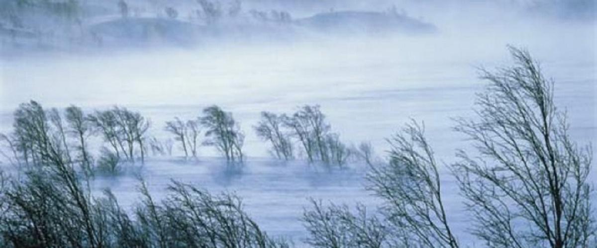 ANM a emis, vineri dimineaţă, atenţionări cod galben de vânt puternic pentru şase judeţe. Sunt vizate, în special zonele de munte.