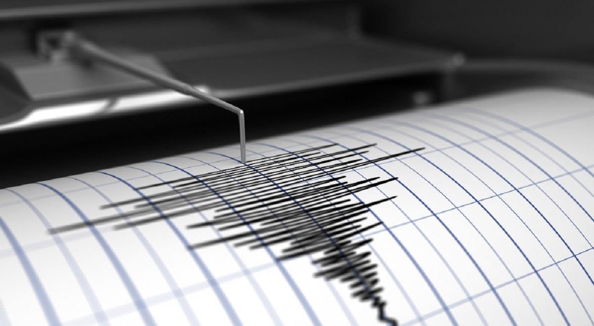 Un cutremur s-a produs în România vineri seara. Acesta a fost urmat de un alt seism în timpul nopții. Află ce s-a întâmplat.