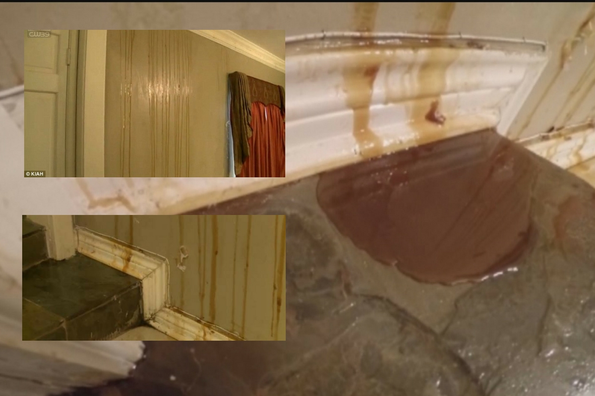 A văzut o substanță lipicioasă care se prelingea pe pereți. Când și-a dat seama ce avea în casă, a luat-o la fugă!