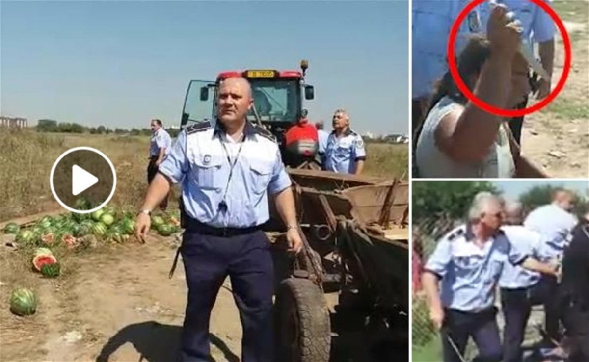 Scene ȘOC! Polițiști locali, atacați de o șatră de romi!