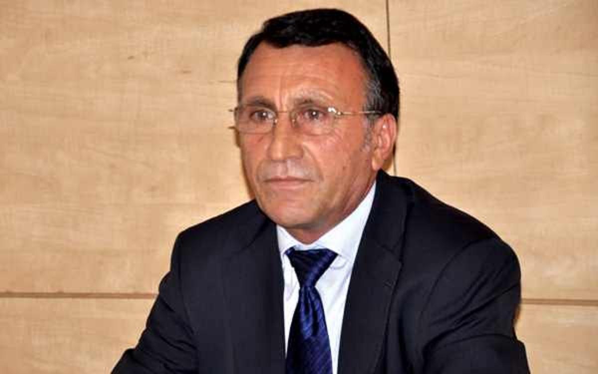Viorica Dăncilă: Paul Stănescu, președinte executiv al PSD