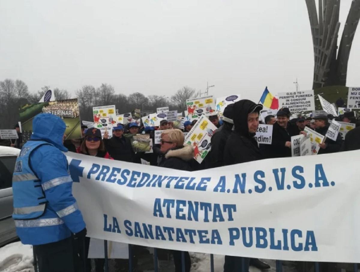 Sute de medici veterinari protestează în Piața Presei Libere. Care sunt nemulțumirile lor