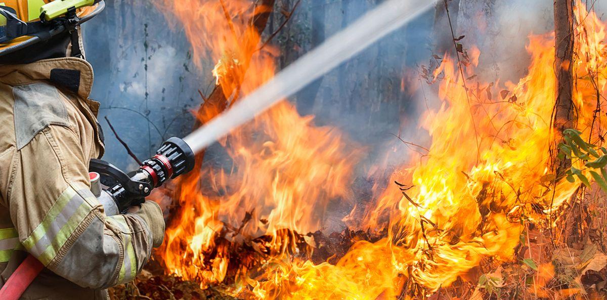 Incendiu de proporții în Oradea! Aproape 100 de pompieri au intervenit de urgență