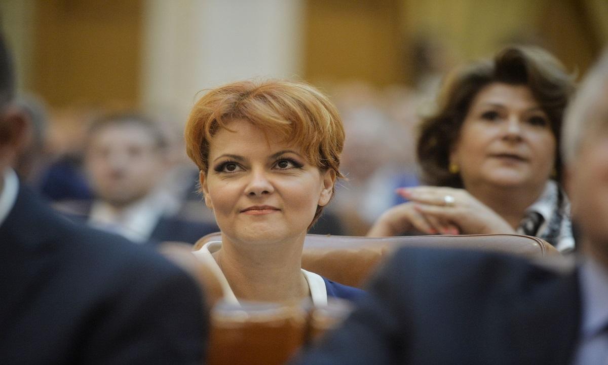 Lia Olguţa Vasilescu: Pilonul II de pensii va fi opţional