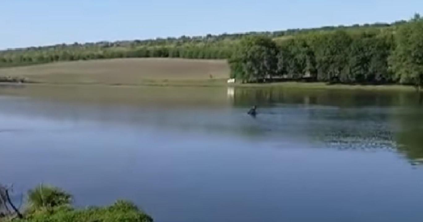 Trei frați din Moldova s-au înecat într-un bazin acvatic