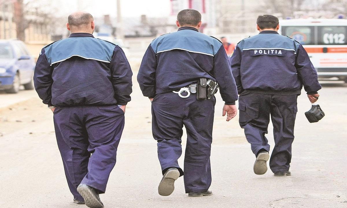 Maramureş: Hoțul din casa unor bătrâni, descoperit cu ajutorul unui câine poliţist