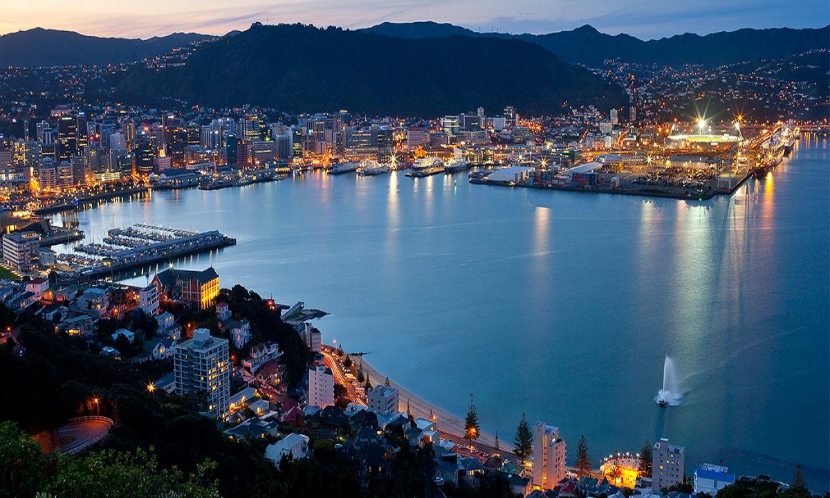 Moment inedit! Wellington amână artficiile după ce o balenă şi-a făcut apariţia în portul oraşului