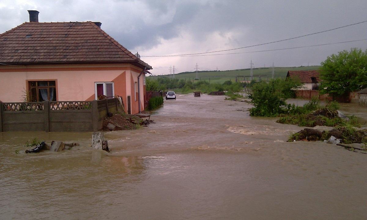 Zeci de locuinţe inundate după ploile din ultimele 24 de ore