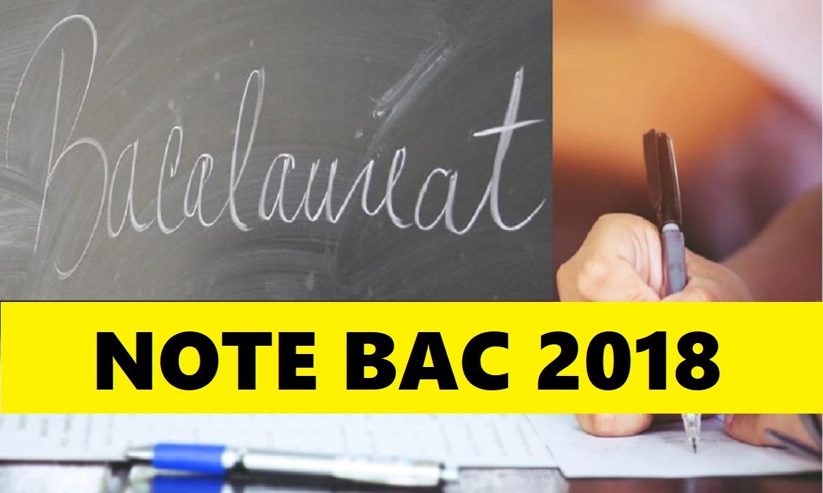 Rezultate BAC 2018. Care este rata de promovabilitate