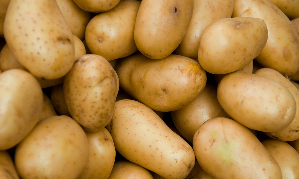Cartofi mai puţini şi mai scumpi în toamnă!