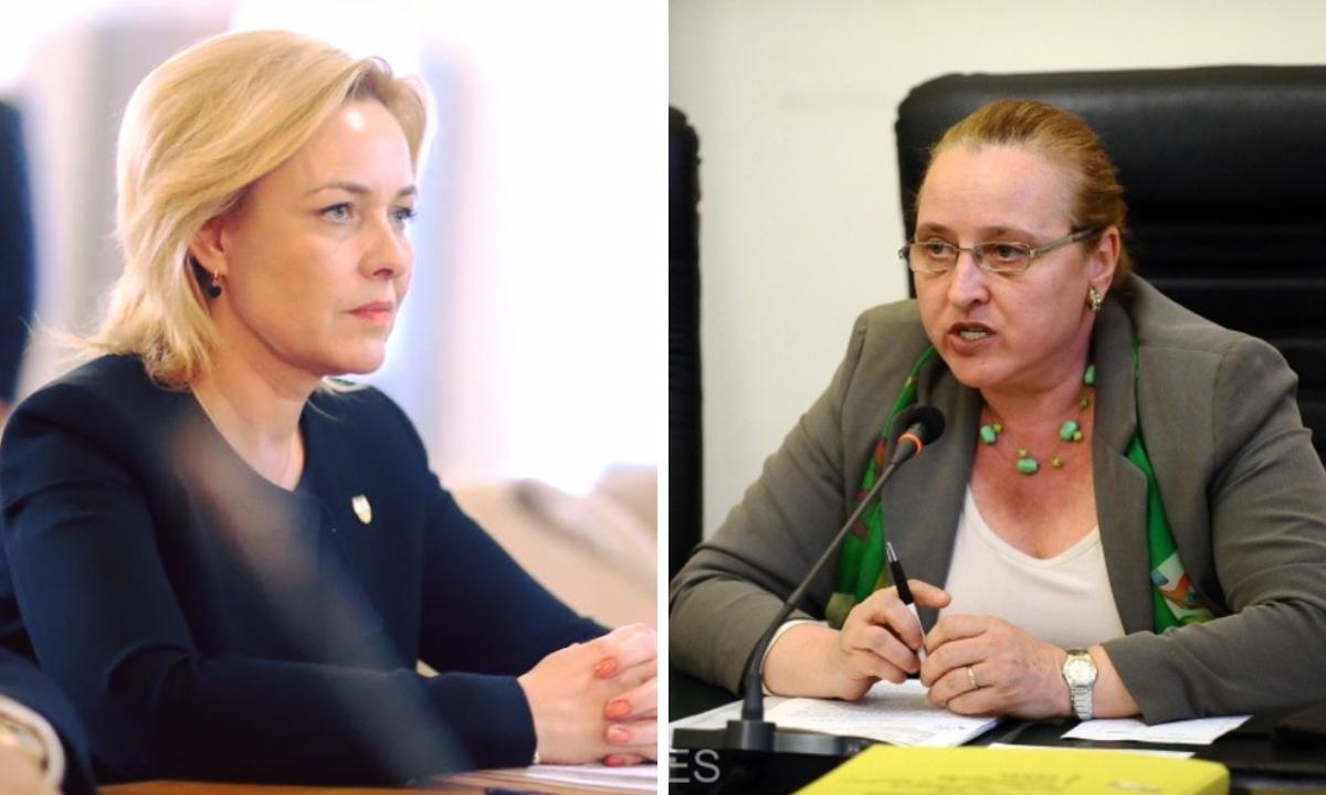 Ce au spus Carmen Dan și Speranța Cliseru în Comisia de Apărare
