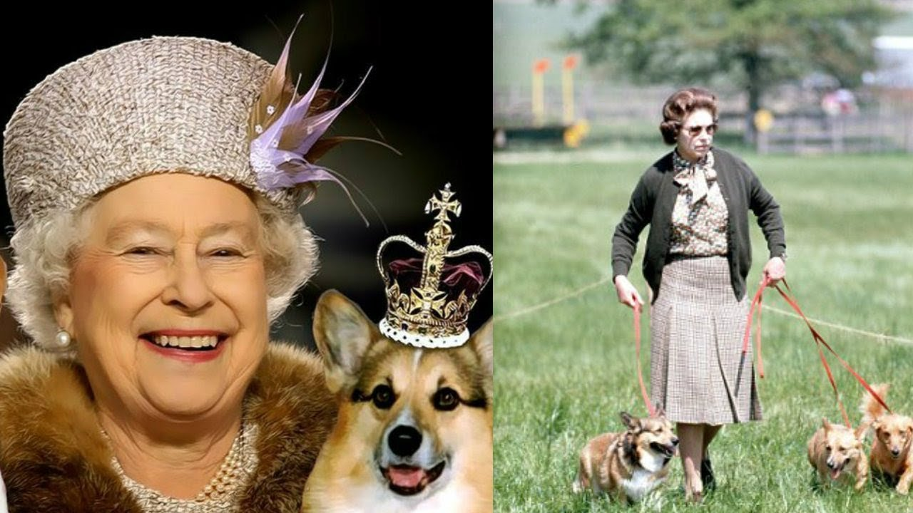 Doliu la Casa Regală Britanică. Regina este profund întristată...