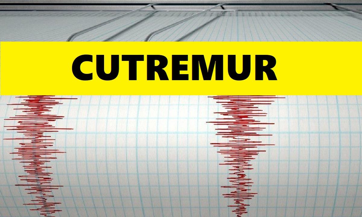 Cutremur cu magnitudinea de 3,1 grade în Vrancea