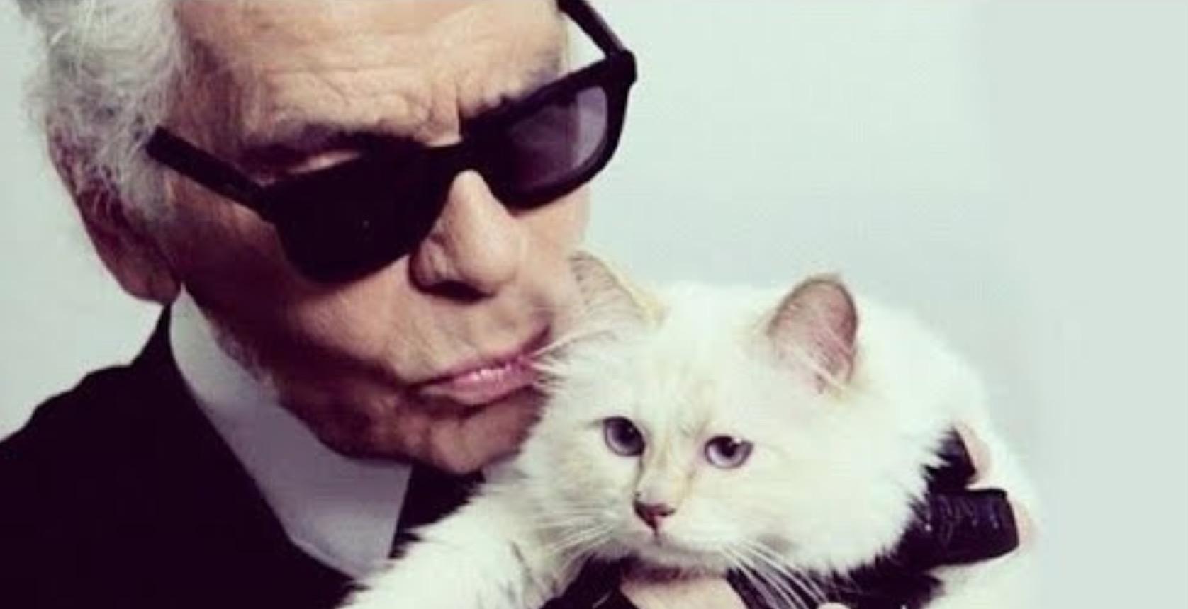 Ce avere a moștenic pisica lui Karl Lagerfeld (Chanel) singura moștenitoare