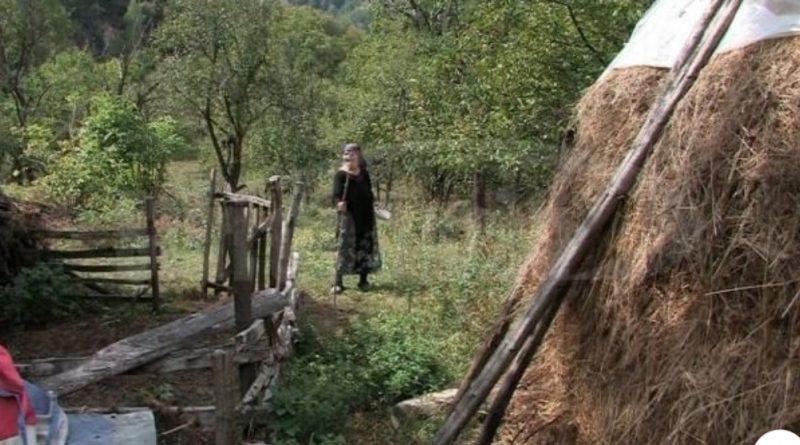 """Batrana care trăieşte singură într-un sat dispărut, înghiţit de pădure. """"Am avut două căţele, dar mi le-au mâncat lupii"""""""