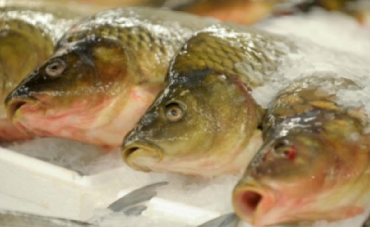 ALERTĂ alimentară! Pește contaminat cu mercur pe piața românească! Zeci de tone au fost confiscate de urgență
