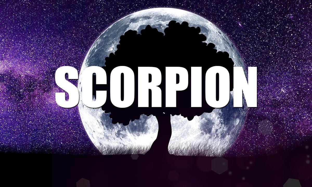 Horoscop Minerva săptămâna 17-23 februarie 2020 Scorpion