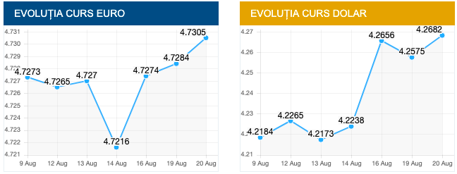 Evoluție curs EURO și DOLAR