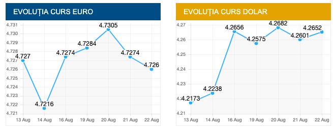 Evolutie curs euro și dolar. sursa foto: cursbnr.ro