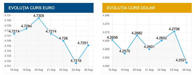 Evolutie curs valutar euro si dolar. sursa foto: bnr