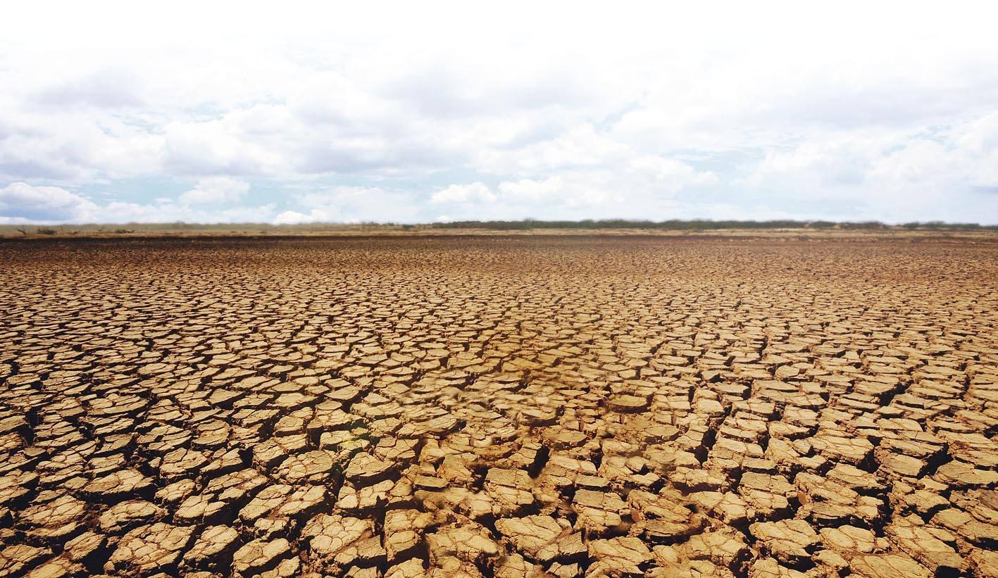 Agricultura este la pământ! Climatologii anunță un an secetos