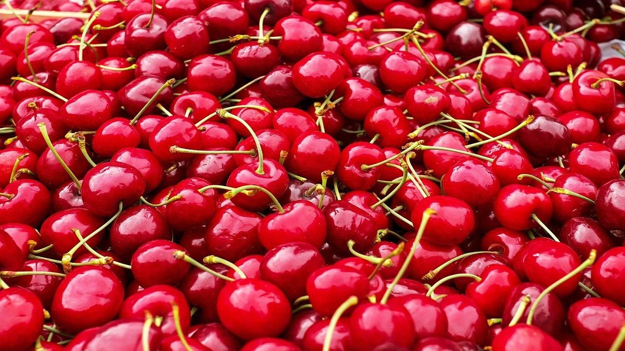 """Ce se află în spatele afacerii """"Cireșe pentru fraieri"""": fructele care costă mai mult decât aurul"""