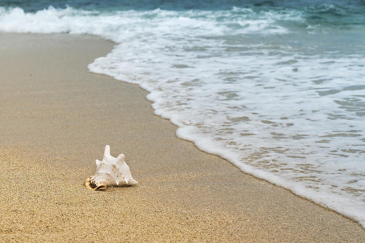 Cum vom face plajă în stare de alertă