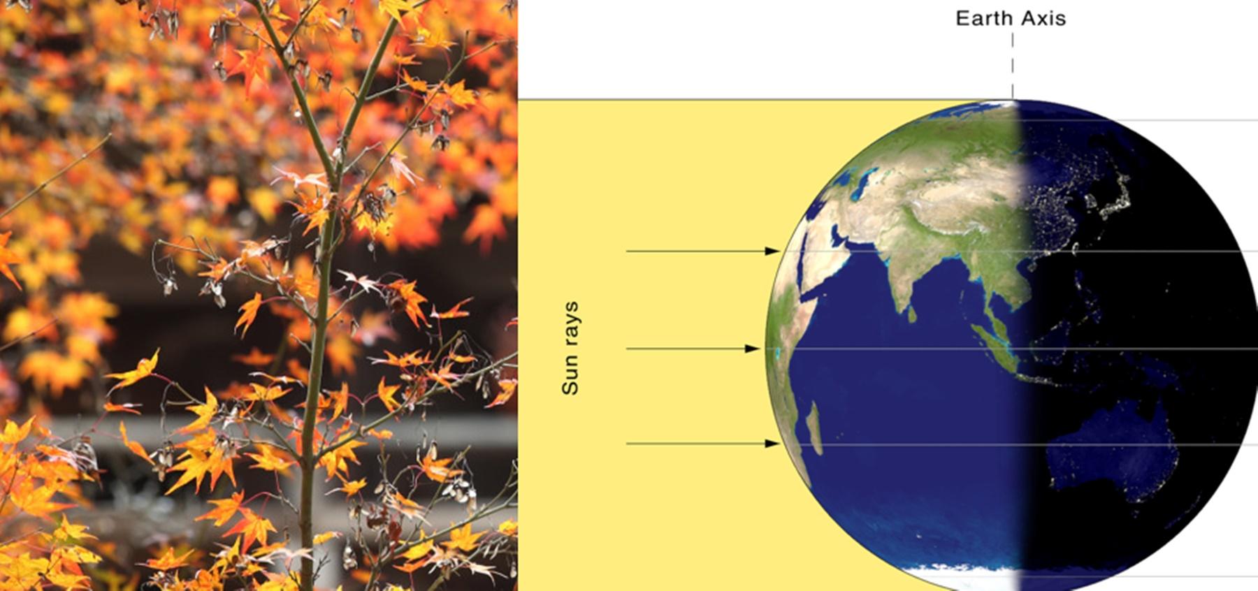Echinocțiu de toamnă pe 22 septembrie. Schimbări la 360 de grade pentru zodii
