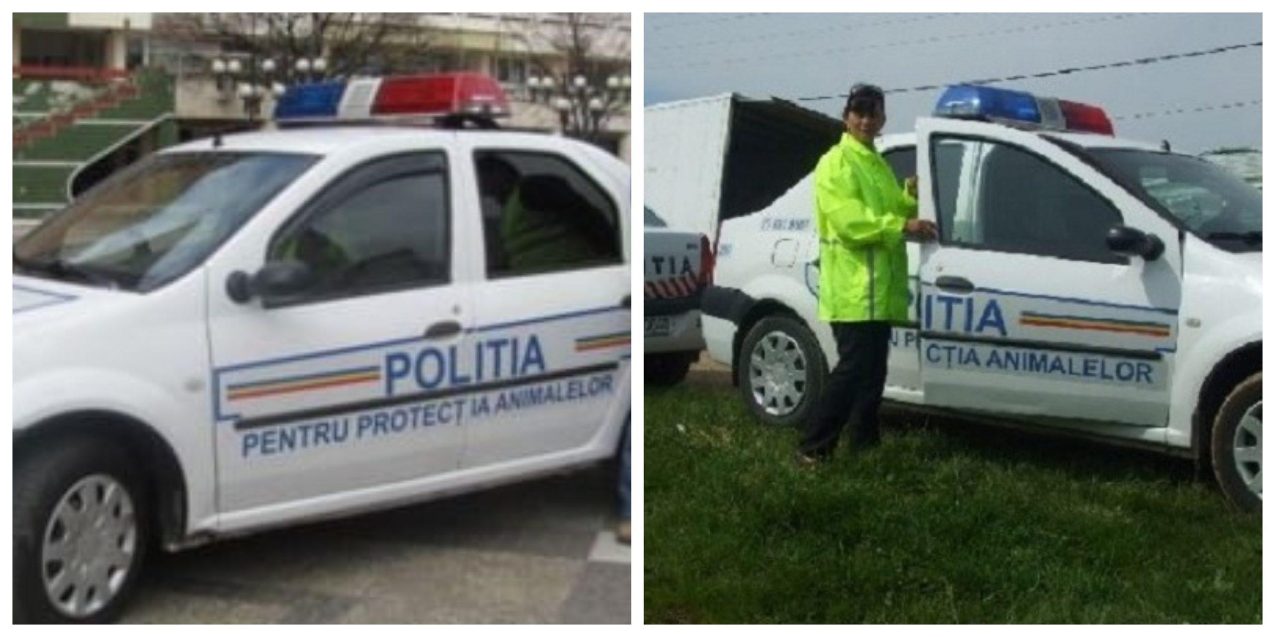 A apărut o nouă poliție în România. Află despre ce este vorba