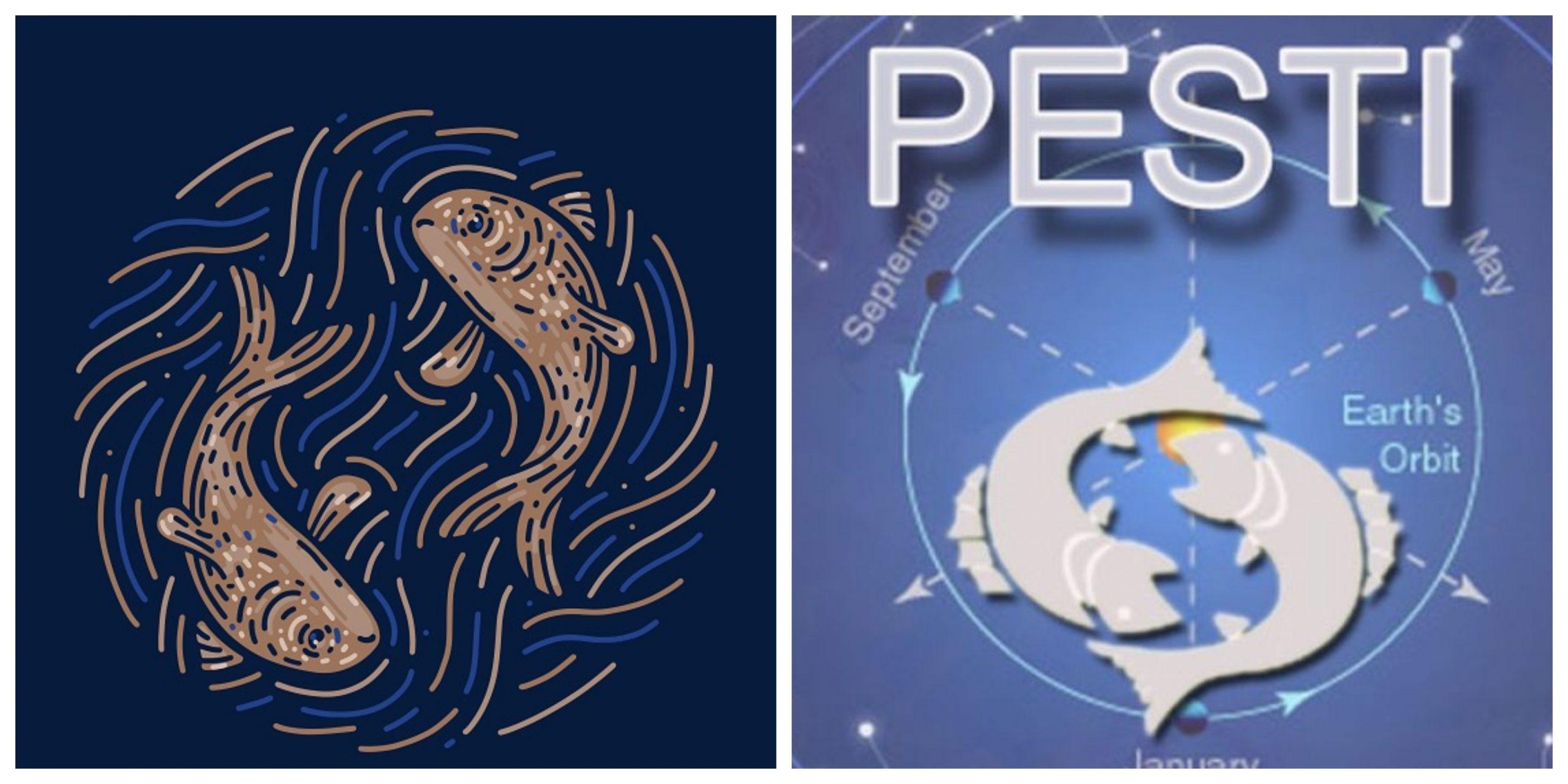 Pești: Ce îi așteaptă pe nativii acestei zodii până la sfârșitul anului