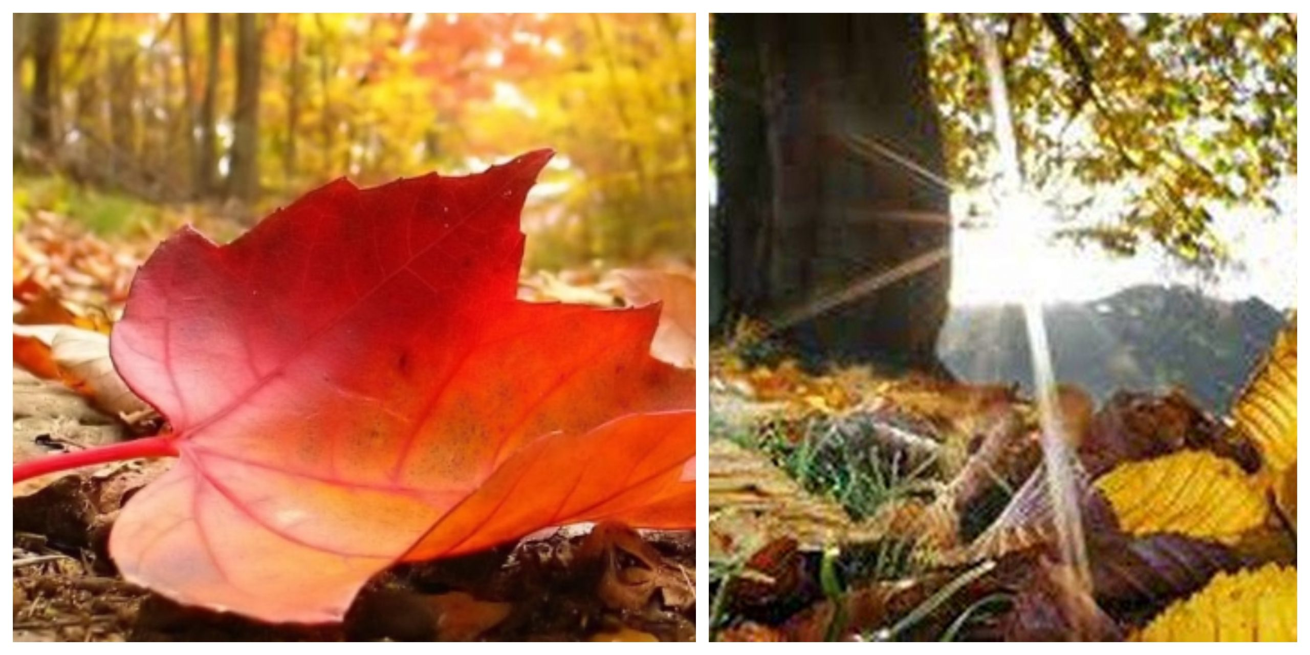 Prognoza meteo ANM 24 octombrie. Vremea se menține caldă în prima zi de weekend