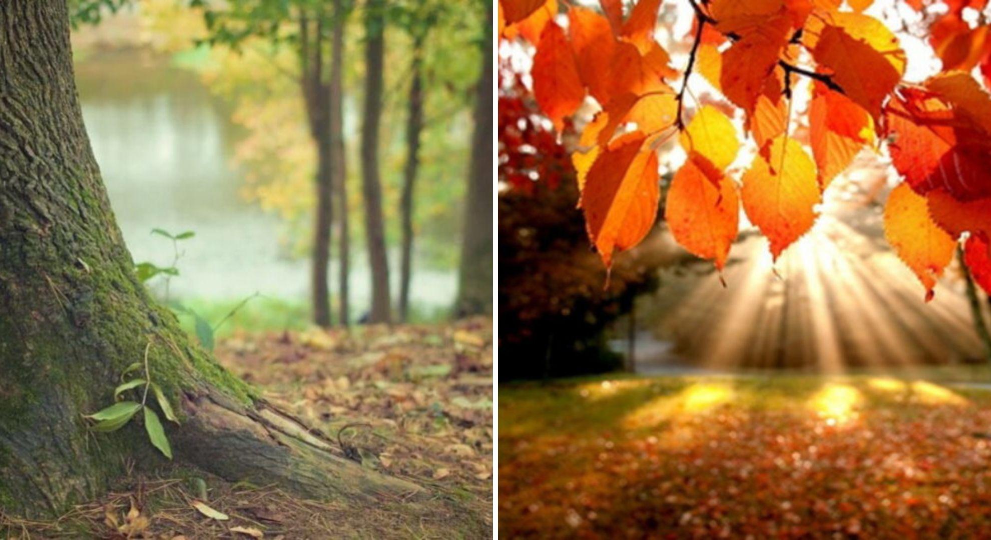 Prognoza ANM 15 octombrie. O nouă încălzire a vremii