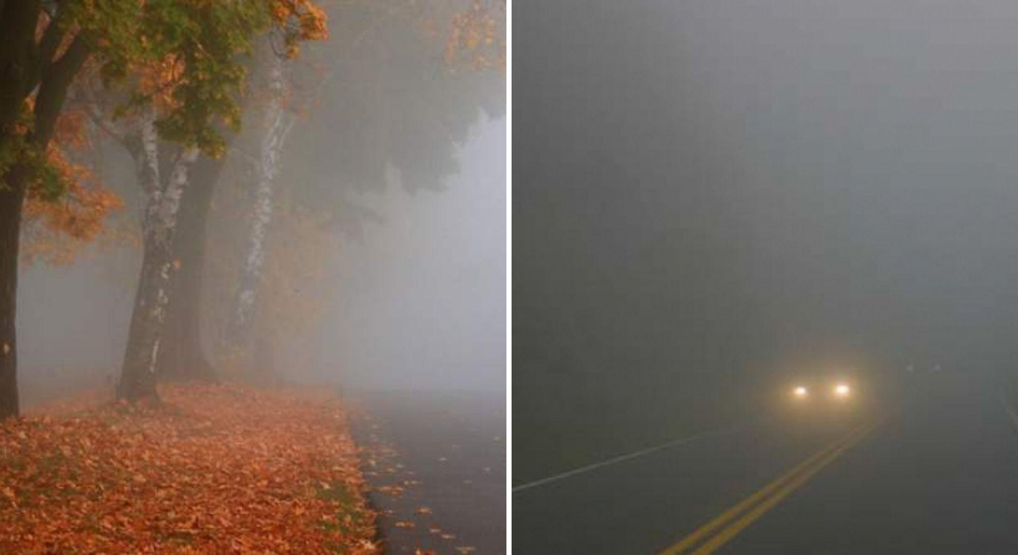 Cod galben de ceață în 11 județe din țară. Atenție șoferi!
