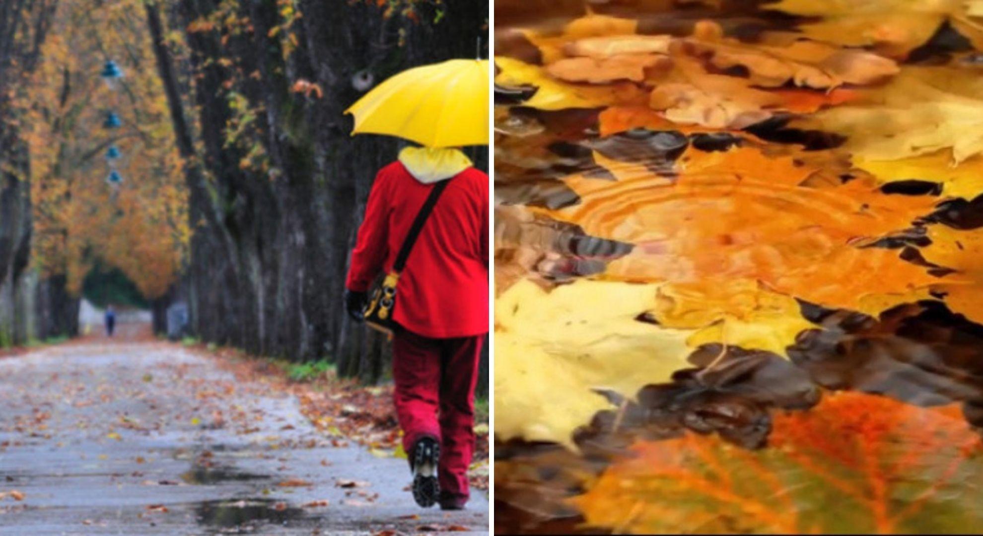 Prognoza meteo 10 noiembrie 2020. Frigul se instalează în România